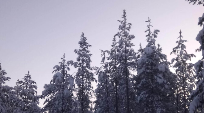 Joulukuuta ja uuteen vuosikymmeneen