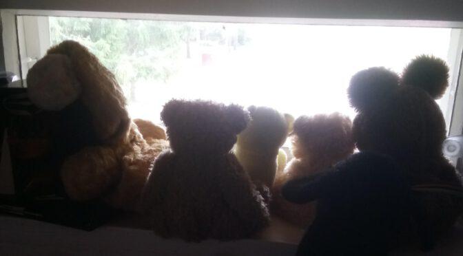 Nallet ikkunalla